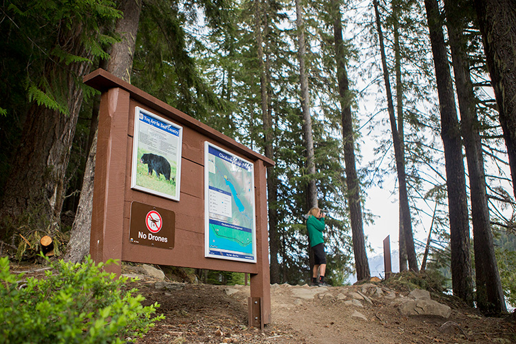 Trail map and information board at Cheakamus Lake