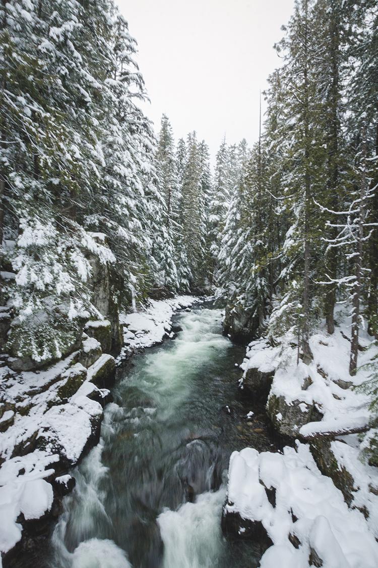 Cheakamus River Whistler