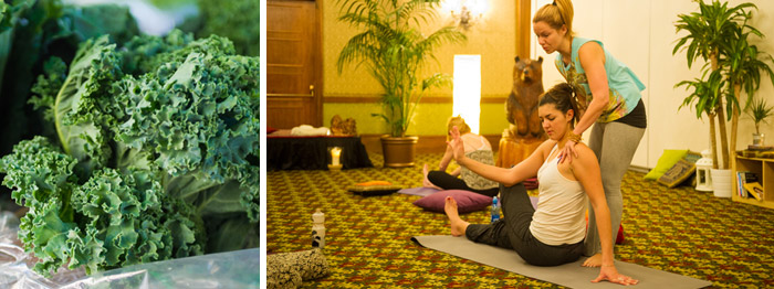 Yoga and Healthy Food at Nourish Events