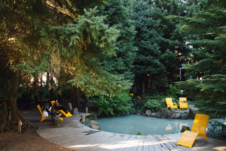 Loungers at Florence Peterson Park in Whistler