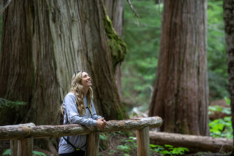 Hiker looking at ancient cedar trees in Whistler