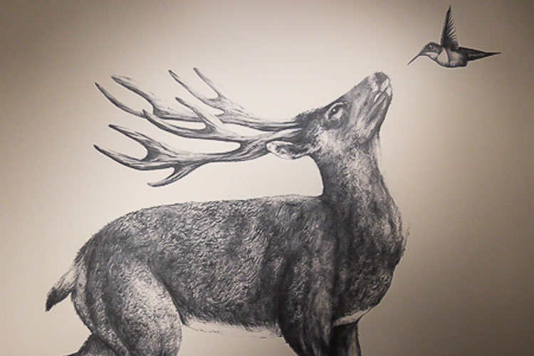The deer and hummingbird artwork on the walls of Hunter Gather.