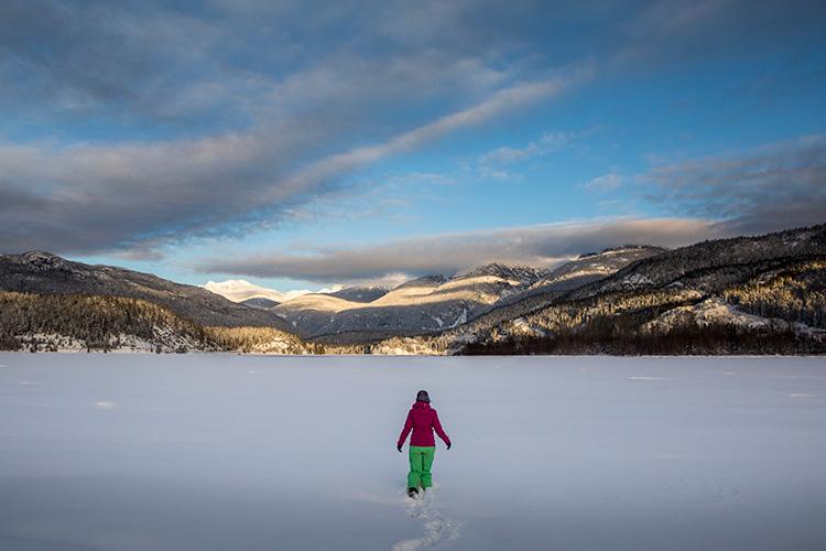 Snowy Whistler Landscape