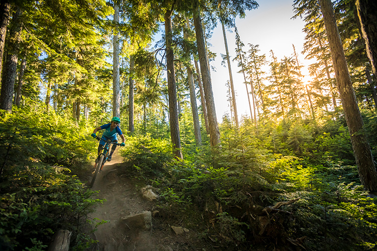 Cross Country Mountain Biking in Whistler