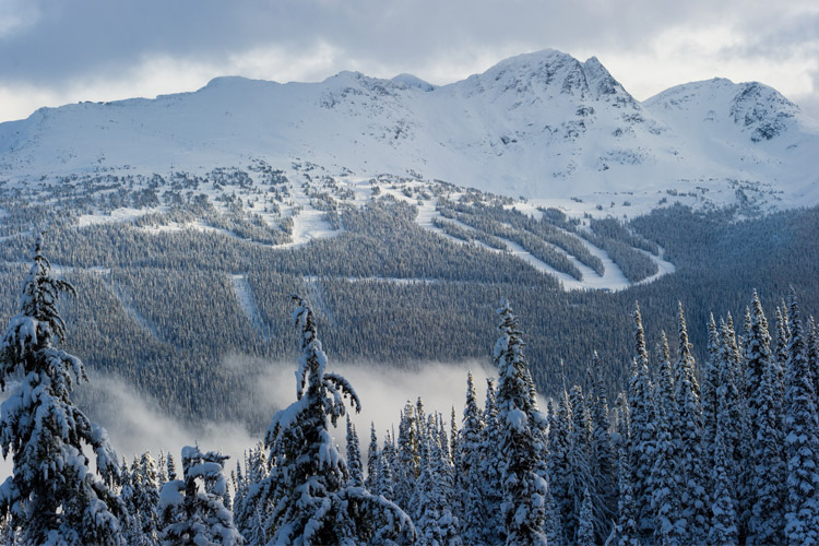 Blackcomb Mountain viewed from Whistler Mountain
