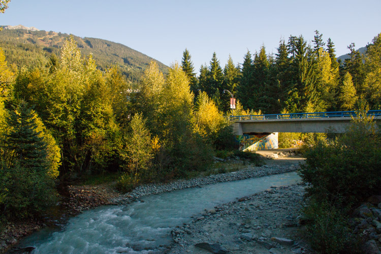 Arts and Culture in Whistler